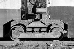 fomapan200_13x18_0002 (ekech) Tags: 13x18 13x18holzkamera ishootfilm istillshootfilm buyfilmnotmegapixels filmisnotdead analog analogue largeformat grosformat caltar305mm caltar fomapan fomapan200 rodinal blackwhite schwarzweiss grubenbahn monochrome