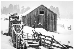 Cattle Barn in the Snow (jesmo5) Tags: colorado landscape vallecito antique barn christmas cold country fence hills ice mountains old pinetrees postcard rural rustic snow trees vintage winter wintersnow wood woods