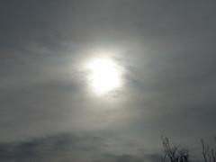 Hazy Sunshine. (dccradio) Tags: lumberton nc northcarolina robesoncounty outdoor outdoors outside nature natural sky overcast cloudy greyskies grayskies sony cybershot dscw830 march spring springtime sunday sundaymorning goodmorning morning sun sunshine haze hazy hazysunshine sunlight