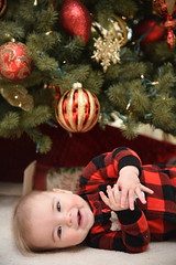 2018-12-25 11.48.37 (whiteknuckled) Tags: christmas fayetteville smiths family trip 2018 joshua under tree day opening presents