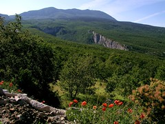Ucka from the N (Vid Pogacnik) Tags: hrvatska croatia istra istria učka ucka mountain outdoors hiking landscape