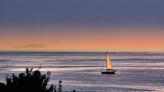 ......... (robertoburchi1949) Tags: sea seascape mare landscape paesaggio colours natura nature sailboat sky cielo