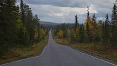 Lapland_Day2_Muonio_20180911_IMGS4772_s (Andrew-Holloway) Tags: lapland muonio autumn torassieppi