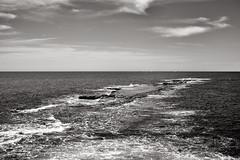 I like long walks, I said... (Tony Macrellis) Tags: portnoarlunga portnoarlungajetty reef portnoarlungareef beach sea water waves sky clouds blackandwhite bw blackwhite tonymacrellis macrellis