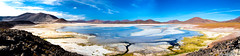 colorful Atacama desert - Chile (Andre Yabiku) Tags: atacama sanpedrodeatacama chile southamerica andreyabiku yabiku river desert mountain cordilleradelosandes andeanmountains panorama antofagasta