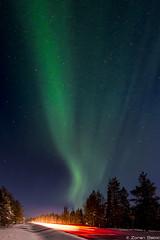 Z19_0370 LT (Zoran Babich) Tags: winter snow lapland lappi finland suomi northernlights auroraborealis