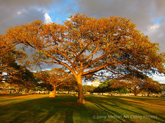 Last Light of the First Day of Spring (macprohawaii) Tags: sunset spring alamoanabeachpark honolulu hawaii canonpowershots9
