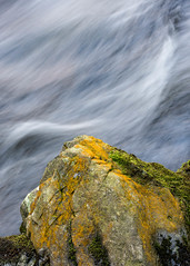 Contrast (Donard850) Tags: codown northernireland shimnariver tollymore contrast movement river rock