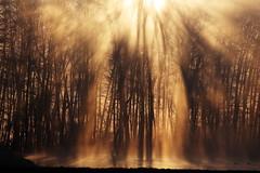 IMG_0562 (geraldtourniaire) Tags: natur nature canon landschaft licht l sonnenaufgang mittelfranken franken ef40300lusm 6d eos6d