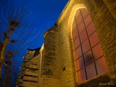 Magic light, Magic edges (Fernando Álvarez Rodríguez) Tags: olympusomd photowalk phototravel photohistory streetphotography leuven belgium