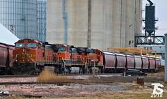 BNSF 4678 is power for a EB G844 Grain Train 12-21-18 (KansasScanner) Tags: iowafalls alden williams iowa cn bnsf train railroad