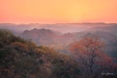 Aravalli (Rajesh Jyothiswaran) Tags: forest incredible incredibleindia india jungle layers rajasthan sky sunset travel udaipur aravalli hills mountain range tourism wild