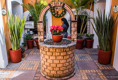 2018 - Mexico - Oaxaca - NABU, 5 de Mayo (Ted's photos - Returns late Feb) Tags: 2018 cropped mexico nikon nikond750 nikonfx oaxaca tedmcgrath tedsphotos tedsphotosmexico vignetting fountain plants arch nabu nabuoaxaca tile tilework