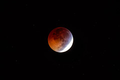 Moon eclipse (Franck) (Club Astro PSA) Tags: astronomie lune eclipse astrophoto astronomy moon red rouge blood bloodmoon sky ciel deep night nuit star stars etoile dark noir sombre astro phase totaly shadow earth ombre terre totale totalité totality 2019 first premiere lunar lunaire