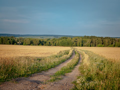 Village road (banagher_links) Tags: olympus omd em10 mark iii mft micro 43 russia country sigma