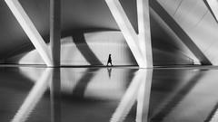 The Woman in Black (Andrew G Robertson) Tags: valencia architecture city arts science ciudad de las artes y ciencias museu les ciències príncipe felipe museum sicences reflections sunrise santiago calatrava felix candela spain espania street woman