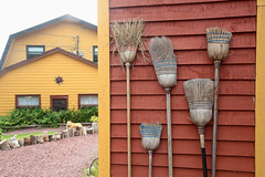 Broom Wall (peterkelly) Tags: digital canon 6d northamerica canada newfoundlandlabrador cavendish yellow red encarnado brooms broom house home wall walkway