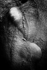 (willy vecchiato) Tags: art blackandwhite biancoenero bnw bnwsociety bw bwcrew bwlover bwstylesgf fineartphotobw iroxbw monoart monochromatic noir monochrome monotone photography abstract abstractart abstraction abstracto artsy creative bnwmood fujifeed contemporaryphotography