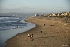 Winter Beach Scene (markjwyatt) Tags: fujifilmxt2 fujinon1855mmzoom manhattanbeach california