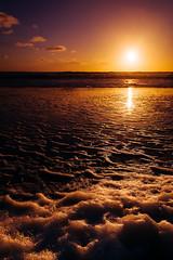 Santa Monica (Eduardo Acosta Photography) Tags: ambulantphotographer beach leicaq ocean people sand santamonica seagulls street water pier