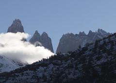 Torres del Paine (CURZU@) Tags: parquenacionaltorresdelpaine torresdelpaine magallanes patagonia naturaleza natural nature nacional natales parque montañas reservadelabiosfera biosfera chile americadelsur sudamerica