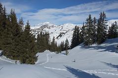 DSCF3770 (Laurent Lebois ©) Tags: laurentlebois france nature montagne mountain montana alpes alps alpen paysage landscape пейзаж paisaje savoie beaufortain pierramenta arèchesbeaufort