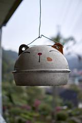RX1_DSC00014_C1 (Bazoka+Cynthia) Tags: 小婆 新北市 猴硐 貓 ruifangdistrict newtaipeicity taiwan 瑞芳區