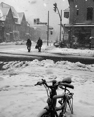 Winter Storm (Cindy's Here) Tags: winterstorm weather snow bw toronto ontario canada iphone ansh scavenger6