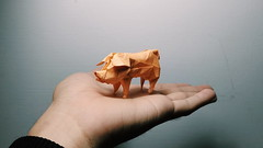 Pig (Anson Chang ORIGAMI) Tags: pig origami papercraft art design