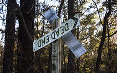 dead end (Kelly LaCour) Tags: dead end trees tree forest street highway signs 42 north carolina nc roadtrip pines oaks pine upside down broken dilapidated run photography color kellylacourphotography