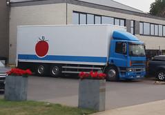 DAF CF E2 75.280 ATI FAR - Meerhout, Provincie Antwerpen, Vlaanderen, België (Celik Pictures) Tags: trucks tir kamyon lkw vrachtwagen camion lastwagen lastbilar belgië gezieninbelgië seeninbelgium roadphotos roadvehicles voertuigen parkedvehicles geparkeerdvoertuigen seeninmeerhout provincieantwerpen vlaanderen meerhout daf cf e2 75280 ati far 1bix426 namelesstrucks truckswithnocompanyname randomtrucks particular