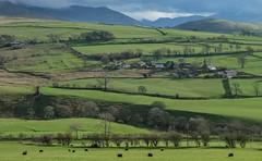 Northern Fells2 (judepics) Tags: lake district northern fells countryside farm farmland fields ireby cumbria