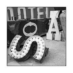 neon 6 • las vegas, nv • 2018 (lem's) Tags: neon letters lettres enseignes marquee signs bulbs ampoules las vegas nv rolleiflex t