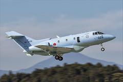 Raytheon U-125A - 023 (NickJ 1972) Tags: hyakuri airbase air base afb japan jasdf 2018 aviation raytheon hawker siddeley hs125 u125 923026