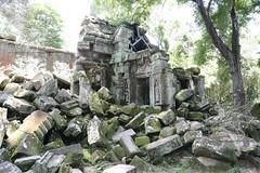 Angkor_Ta Prohm_2014_21