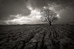I BELIEVE IN YOU (plot19) Tags: yorkshire dales malham love light landscape limestone sky trees north northern now england uk britain blackwhite mood plot19 photography sony rx100