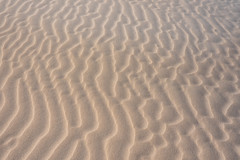 Pattern in the sand (Rushay) Tags: abstract pattern sand backgrounds nature portelizabeth southafrica