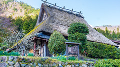 DSC01342 (Neo 's snapshots of life) Tags: japan 日本 京都 kyoto amanohashidate 天橋立 あまのはしだて sony a73 a7m3 24105 伊根