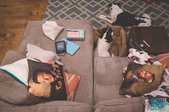 Week 2: Home Sweet Home (bmurphy502) Tags: homesweethome fromabove home davidbowie mrt throwpillows couch indoors 35mm p52 2019p52