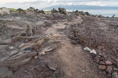 Stay on the Path I (Austin Westervelt) Tags: hawaii maui island landscape seascape rocky rocks overcast lava ocean
