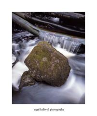 Padley Gorge (Nigel Halliwell) Tags: peakdistrict padleygorge rocks river ebony45s film velvia 5x4 lf