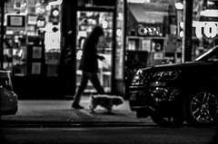 Walking my dog in the shadows (Capitancapitan) Tags: walk dog nyc black white street photography neury luciano new york city manhattan pentax shadows