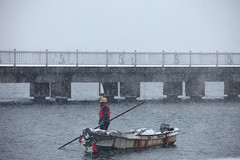 FML (Elios.k) Tags: horizontal outdoors people oneperson man working worker boat woodenboat rust rusty old port helmet bridge snow coveredinsnow snowfalling snowing heavysnowfall winter cold frozen freezing dof depthoffield focusonforeground backgroundblur greysky weather colour color travel travelling december 2017 vacation canon photography aomori aomorishi tohoku honsu asia japan 5dmkii streetphotography aomoriprefecture tohokuregion
