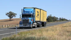 Newell @ Parkes (4/6) (Jungle Jack Movements (ferroequinologist)) Tags: freightliner western star quicks armestos beerwah wattle flat ipec toll hp horsepower big rig haul haulage freight cabover trucker drive transport carry delivery bulk lorry hgv wagon road highway nose semi trailer deliver cargo interstate articulated vehicle load freighter ship move roll motor engine power teamster truck tractor prime mover diesel injected driver cab cabin loud rumble beast wheel exhaust double b grunt kenworth newell parkes