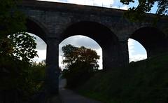 Railway Viaduct, Kilmarnock, Ayrshire, Scotland. Dark. (Phineas Redux) Tags: railwayviaductkilmarnockayrshirescotland scottishrailwayviaducts kilmarnockayrshirescotland scottishlandscapes scottishscenery scottishtowns ayrshirescotland scotland