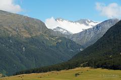 20190207-14-Mt Edwards and Cascade Saddle (Roger T Wong) Tags: 2019 nz newzealand rogertwong sel24105g sony24105 sonya7iii sonyalpha7iii sonyfe24105mmf4goss sonyilce7m3 southisland westmatukitukivalley bushwalk hike landscape outdoors tramp trek walk