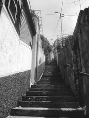 Hiking Trail (Funchal Madeira) (fnks) Tags: stairs building town capital black white city nature concrete wood caret metal historyncountry europe asia island hotel bookshop clouds sky spain holland germany england indonesia japan portugal çzech republic turkey hong kongitaly usa belgium azores