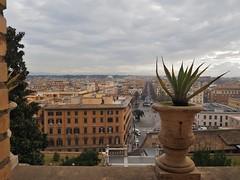 P1170101 (AryAtz12) Tags: roma italy landscape monuments vaticancity vaticanmuseums raffaello piazzanavona piazzadispagna colosseo altaredellapatria