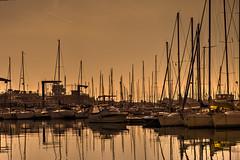 Boats in Sestri Ponente (stefanobosia) Tags: genoa genova italy italia porto port boat barca mare xt20 fujifilm sea orange yellow water acqua arancione giallo