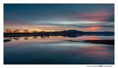 Quiet sunset (Ignacio Ferre) Tags: embalsedesantillana manzanareselreal madrid españa spain lago lake agua water sunset puestadesol anochecer nikon landscape paisaje naturaleza nature ngc